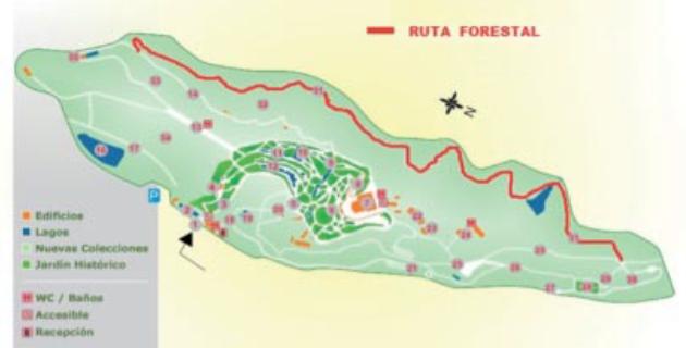 Ruta Forestal