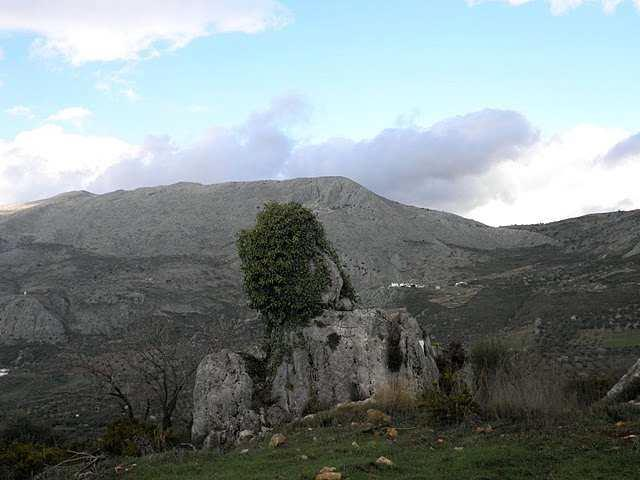 Zafarraya4