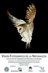 Cartel Exposición Jardin Botánico_baja
