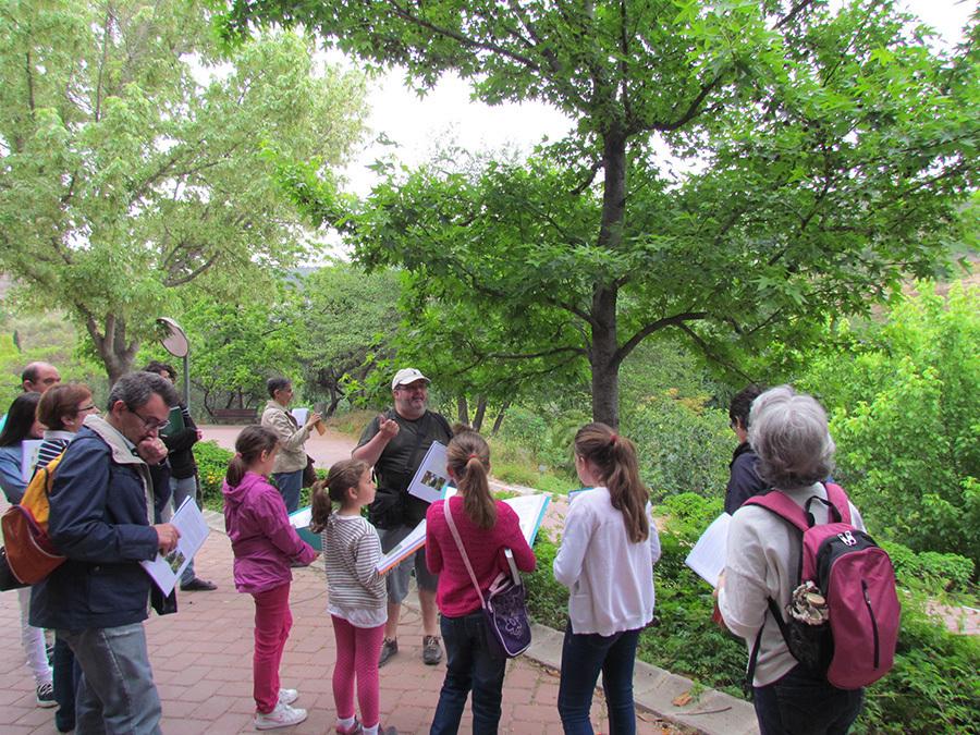 Taller bot nico rboles para conocer el mundo for Talleres jardin botanico