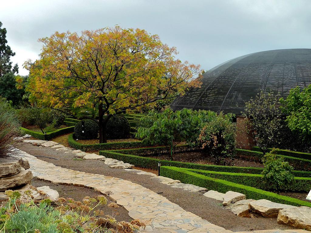 Paseo oto al por el jard n bot nico de la uma asociaci n for Amigos del jardin botanico