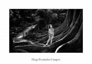 16 A198 Diego Fernández Campos