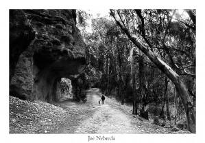 16 B223 Joe Nebreda