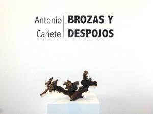 Brozas_5