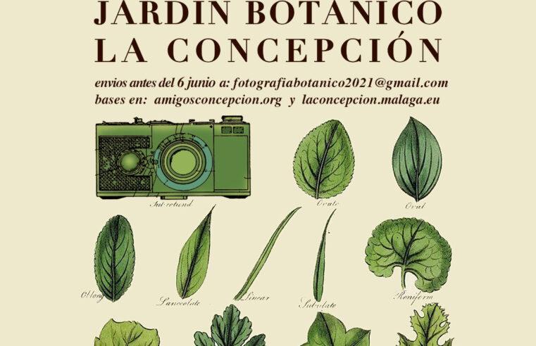 GANADORES XV CONCURSO DE FOTOGRAFÍA «Jardín Botánico Histórico La Concepción» 2021